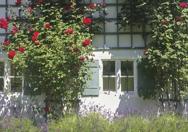 Außen | Am Roseneck Prien